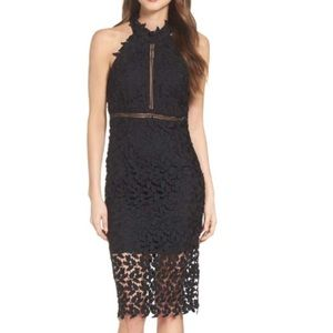 Bardot Gemma lace dress